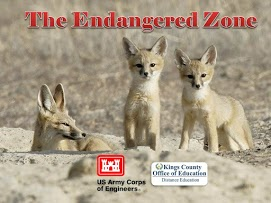 Endangered Zone. Three young foxes with desert background.